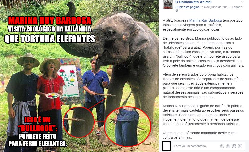 Marina e o noivo postam para fotos com elefantes torturados