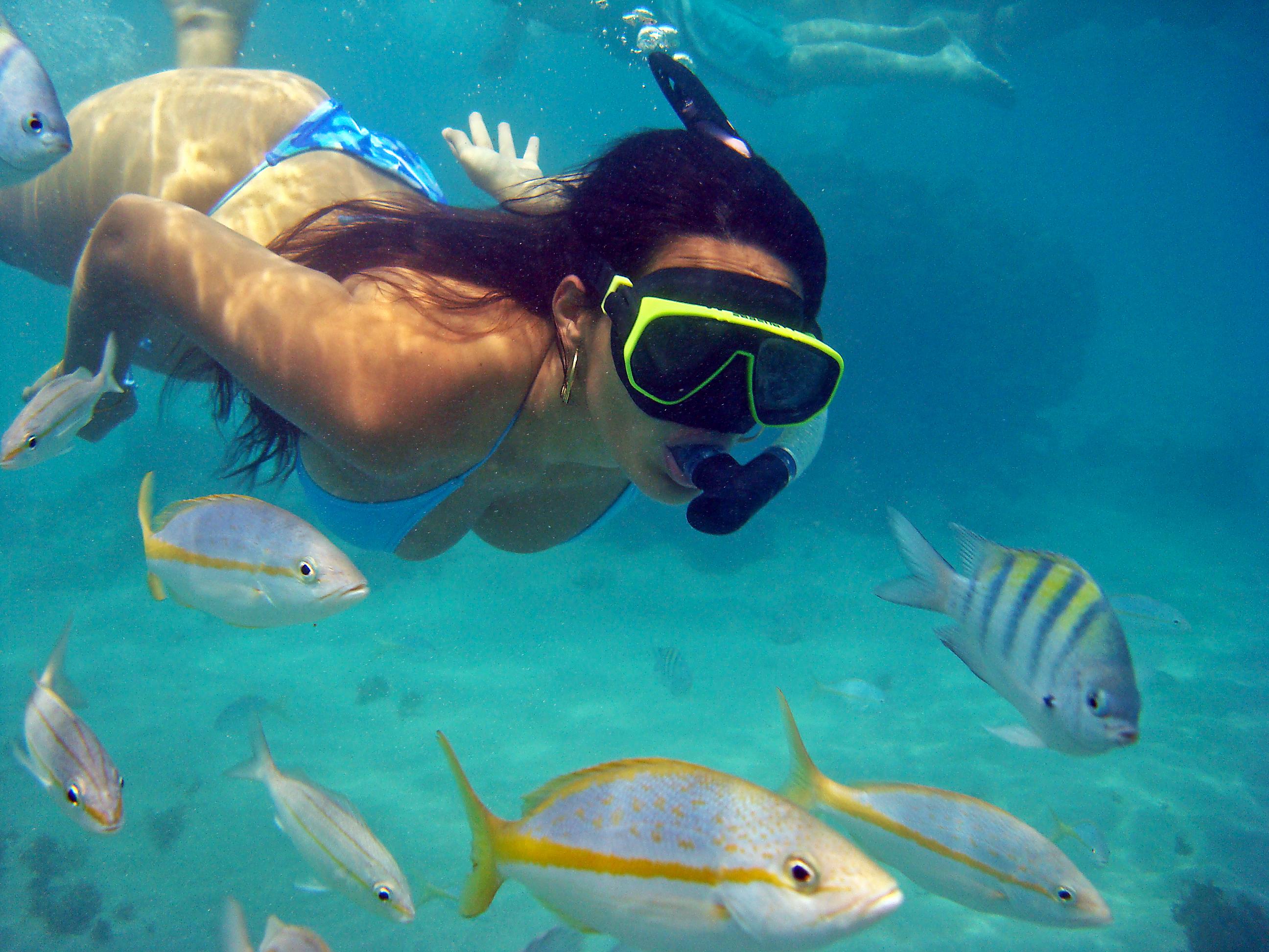 Mergulho em Maracajau é algo fora do comum